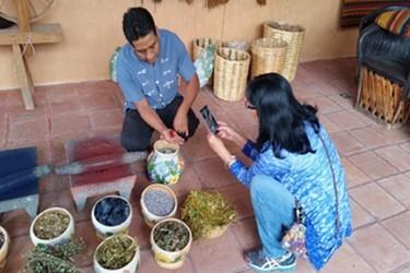 Pinturas vegetales y preparados con tierra