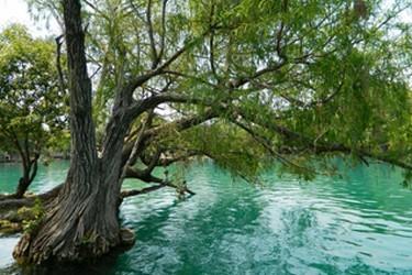 Zona de lagos en colores verdes y azules.