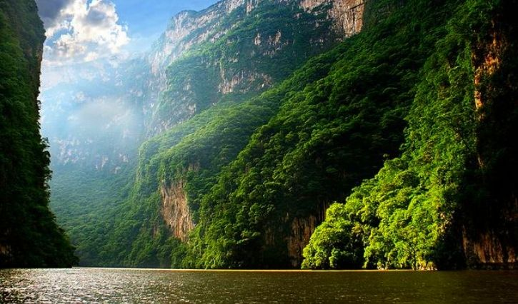 Se puede apreciar la naturaleza que rodea al cañon del Sumidero
