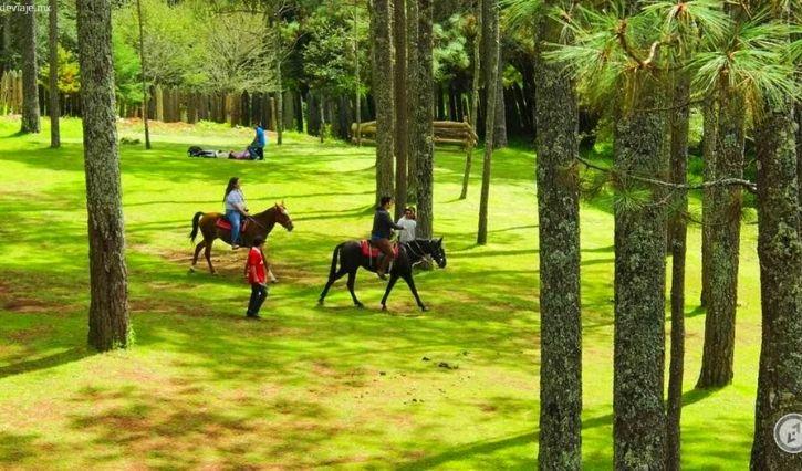 Ejemplo del recorrido a caballo que ofrece Rancho Nuveo