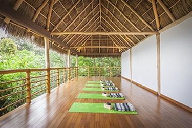 Vista del área de meditación