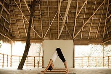 Área de practica de yoga