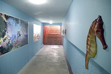 interiores del Hotel Cozumel & Resort