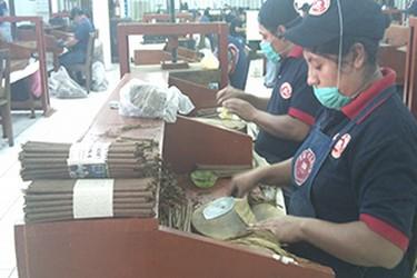 Vista interna de la elaboración de puros