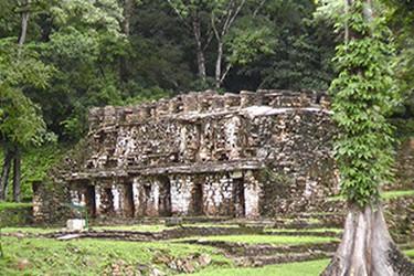 La zona arqueologica de Yaxchilan esta ubicado entre los limites de México y Guatemala.