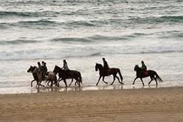Paseo a caballo en Barra vieja