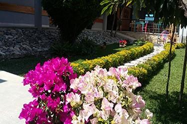 Plantas y flores del Hotel Casa Caelum