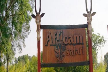 Entrée à Africam Safari