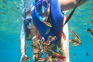 Vista dello snorkeling a Huatulco