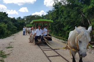 Medio de transporte para acceso al cenote