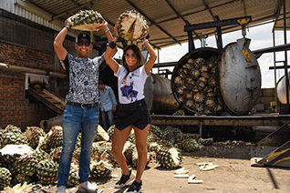 Touristes tenant lagave pour mettre le four