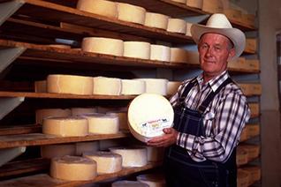 Elaboración de queso menonita