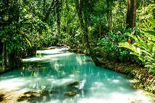 Parque natural Villa Luz