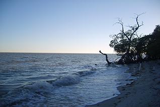 Laguna de Términos en Campeche