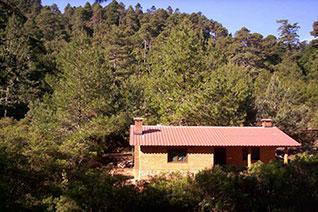 Una casa en la comunidad de La Cumbre, Ixtepeji