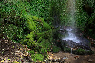 Vista de la visita a la cascada Palo Hueco